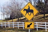 Paseos a caballo — Foto de Stock