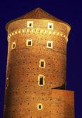 Bastiglia del castello di wawel a cracovia — Foto Stock