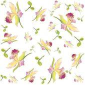 复古花卉背景。兰花. — 图库矢量图片