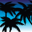 Royalty-Free Stock Vector Image: Palm Trees