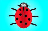 Ladybird vector — Stock Vector