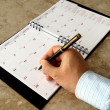 Stock Photo: Monthly planner