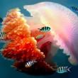 Mosaic jellyfish — Stock Photo