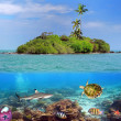 Coral island — Stock Photo #4597982