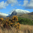 Stock Photo: Ben Nevis in Spring.