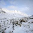 Winter Landscape in the Scottish Highlands. — Stock Photo