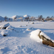 Stock Photo: Rannoch Moor in Winter.