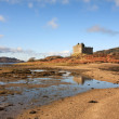 Castle Tioram. — Stock Photo