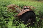 övergivna gamla traktor. — Stockfoto