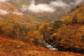 Glen Nevis in the Scottish Highlands. — Stock Photo