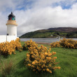 Stock Photo: Ardgour lighthouse.