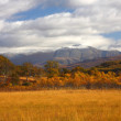 Autumn in Lochaber. — Stock Photo #4901647