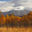 Ben Nevis in Autumn. — Stock Photo