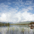 Royalty-Free Stock Photo: Summer on Rannoch Moor.