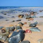 Beach in summer. — Stock Photo