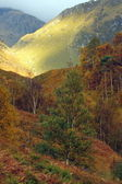 Autumn in Glen Nevis. — Stock Photo