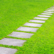 Pathway — Stock Photo #3953947
