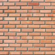 Brick wall — Stock Photo #4612061