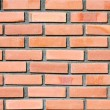 Brick wall — Stock Photo #4612064