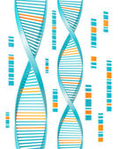 Isolated Dna — Stock Photo
