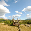 Stock Photo: Mountain landscape with peasant cart