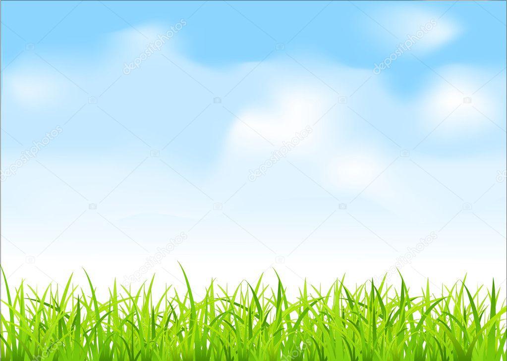 Vector green grass and blue sky — Stock Vector © Alkestida ...