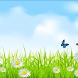 Vector green grass and blue sky with daisies and butterflies — Stock Vector