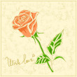 Vector rose on vintage background — Vettoriale Stock #4722240