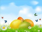 Vector Easter eggs on a green field with daisies and a blue sky — Stockvektor