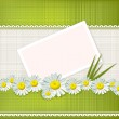 Vector greeting card with daisies and abstracts background — Stock Vector