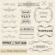 Vector vintage set: calligraphic design elements and page decora — Stockvektor