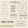 Vector vintage set: calligraphic design elements and page decora — Image vectorielle
