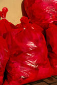 Red Garbage Bag — Stock Photo
