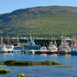 North Cape Harbor — Stock Photo