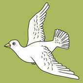Dove flying — Stock Photo