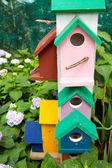 Of ornamental garden — Stock Photo