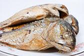Fried mackerel. — Stock Photo