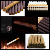 A cuban tobacco collage — Stock Photo