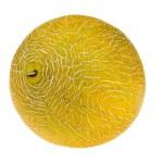 melão amarelo fresco doce — Foto Stock