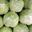 Cabbage — Foto de Stock