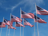 Flags flying — Stock Photo