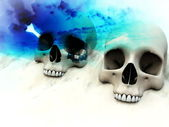 War Skulls — Stock Photo