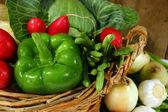 Fresh garden vegetables — Stock Photo