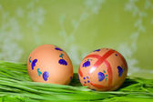 Painted Colorful Easter Eggs on green Grass — Stock Photo