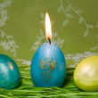 Stock Photo: Easter eggs in Fresh Green Grass