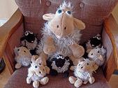 Eine etwas andere Schafherde — Stock Photo