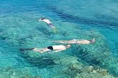 Diving on the crystal clear sea in CYprus — Stock Photo