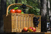 Picnic basket with autumn fruits — Stock Photo