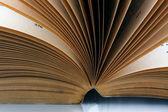 открытая книга — Стоковое фото