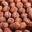 Walnuts — Stock Photo #4045186